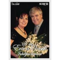25 let Jubilejní koncert č.29
